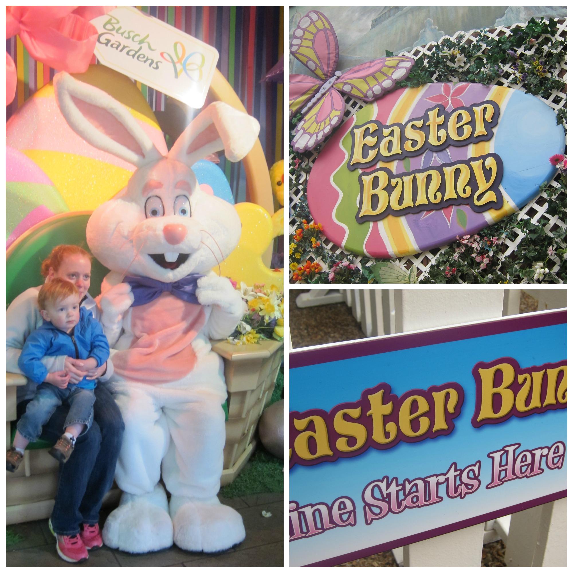 Busch Gardens Hours Easter Garden Ftempo