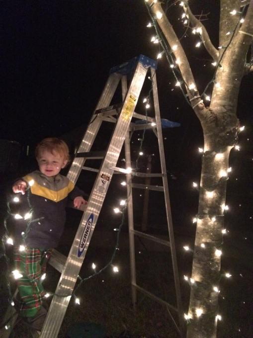 Elijah - lights 2014