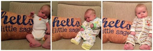 Sage 0-2 months HELLO