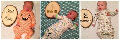 Sage 0-2 months