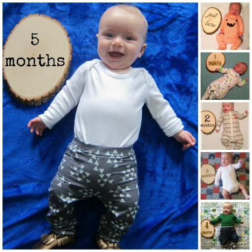Sage - 5 month collage