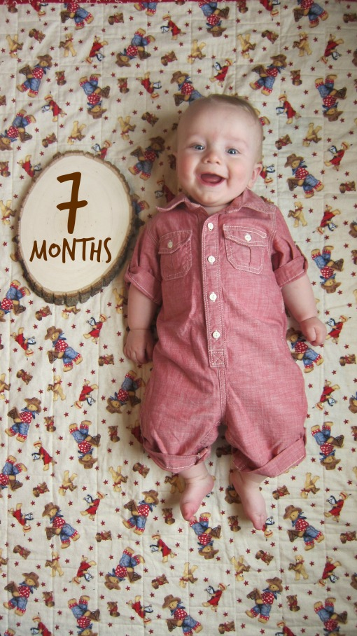 Monthly onesies - Sage 7 months
