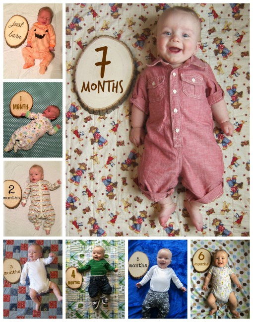Sage - 7 month collage