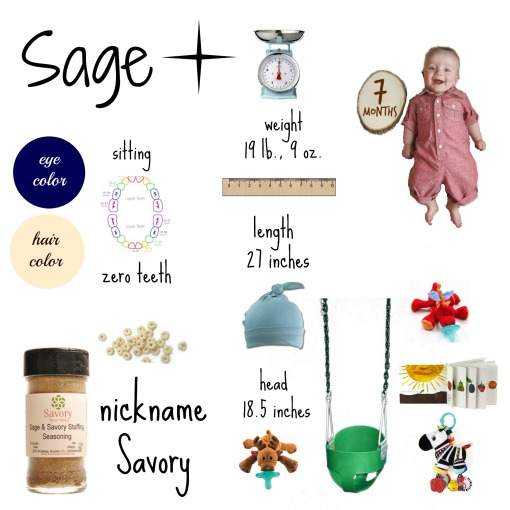 Sage - 7 month info graphic overlay