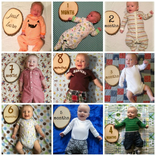 Sage - 8 month collage